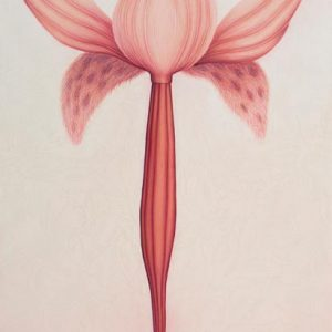 Artwork By Filomena Coppola