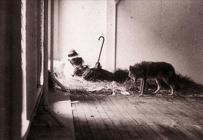 Freedom And Joseph Beuys